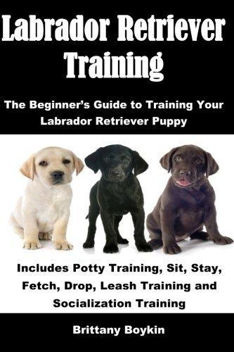 Retriever Training - Labrador Retriever Training: The Beginner's Guide to Training Your Labrador Retriever Puppy: Includes Potty Training, Sit, Stay, Fetch, Drop, Leash Training and Socialization Training