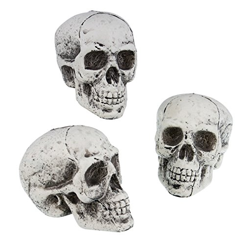 Skull Decoration (Halloween Haunters 5