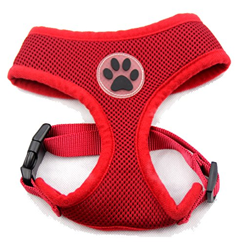(BINGPET BB5001 Soft Mesh Dog Harness Pet Walking Vest Puppy Padded Harnesses Adjustable, Red Small)
