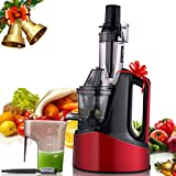 MeyKey Slow Masticating Juicer, Juicer Extractor, Wide Chute Anti-Oxidation, Reverse Function with Juice Jug and Brush, High Nutrient Cold Press Juicer, Easy to Extract Fruit and Vegetable Juice