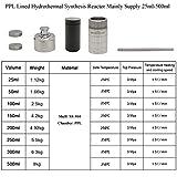 BAOSHISHAN 300ml PPL Lined Hydrothermal Synthesis
