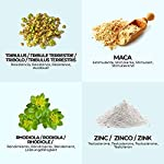 viboost-TRIBULUS-MACA-Maca-peruviana-Zinco-Integratore-testosterone-puro-Aiuta-il-RecuperoMassa-Muscolare-mass-gainer-e-Potenza-Fisica-Arricchito-con-Rodiola-e-Zinco