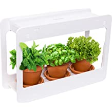 LED Indoor Herb Garden - At Home Mini Window Planter Kit for Herbs, Succulents, and Vegetables by Mindful Design (White)