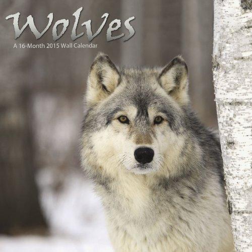 Wolves 2015 Wall Calendar
