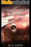 Firestorm:  Walking in the Rain book 5