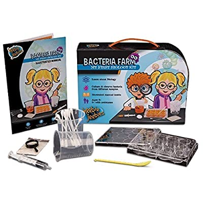 Heebie Jeebies Bacteria Farm - Ages 8+: Toys & Games