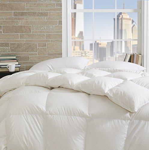 Dreamstead by Cuddledown Prime 550FP Duck Down Blended with Down-Alternative Warmer Hypoallergenic Duvet Comforter, Full/Queen, White
