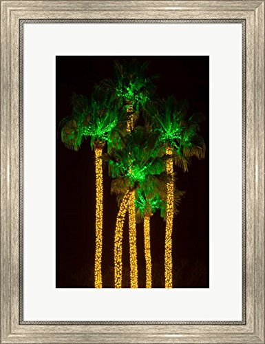 (Illuminated Palm Trees at Dana Point Harbor, California by Panoramic Images Framed Art Print Wall Picture, Silver Scoop Frame, 20 x 26 inches)