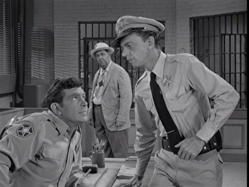 Aunt Bee The Crusader (Best Andy Griffith Episodes)
