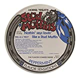 Stud Muffins 1PEP/113R Peppermint Horse Treat, 20 oz