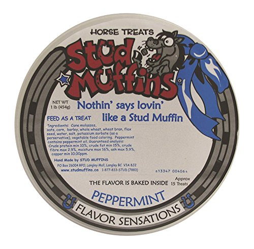 (Stud Muffins 1Pep/113R Peppermint Horse Treat, 20 Oz)