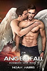 The Angels Fall (Boundless Love Book 1)