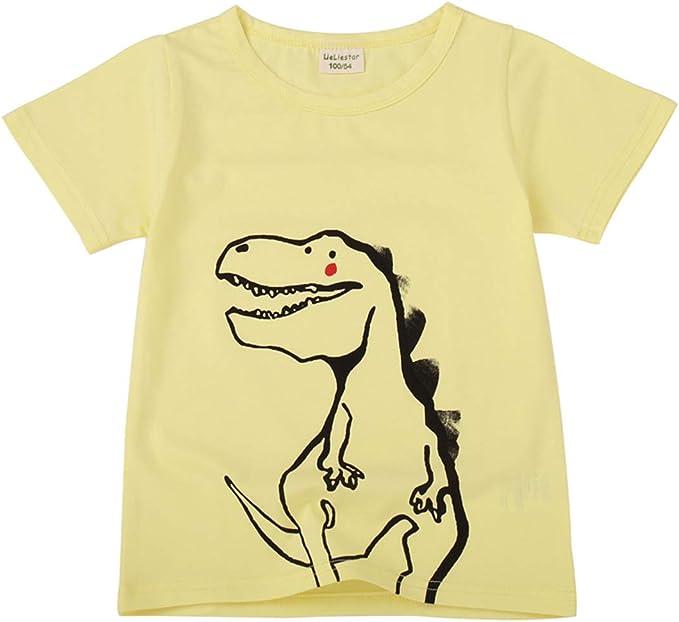 ALLAIBB Niño niños Camiseta Dinosaurio Algodón 2-7años: Amazon.es ...
