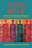 Product review for Healing the Divided Self: Clinical and Ericksonian Hypnotherapy for Dissociative Conditions (Norton Professional Book)