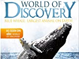 World Of Discovery - Blue Whale:  Largest Animal on Earth