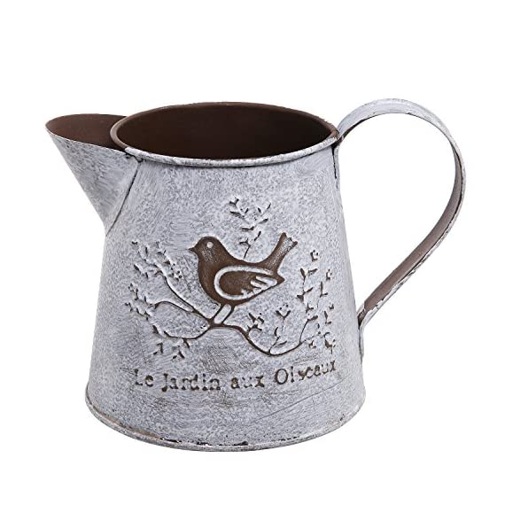 French Country Vintage Bird Decorative White Shabby Chic Mini Metal Pitcher Flower Vase - Vintage style metal pitcher display vase will bring trendy French country flair to any home. Decorated with French script (Garden of Birds) and a graphic with a bird on a blooming branch. Ideal for small potted plants or flowers. - vases, kitchen-dining-room-decor, kitchen-dining-room - 51YSTJg7D1L. SS570  -
