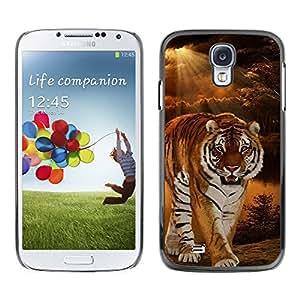 Qstar Arte & diseño plástico duro Fundas Cover Cubre Hard Case Cover para SAMSUNG Galaxy S4 IV / i9500 / i9515 / i9505G / SGH-i337 ( Tiger Night Sunset Wilderness Ray Sun)