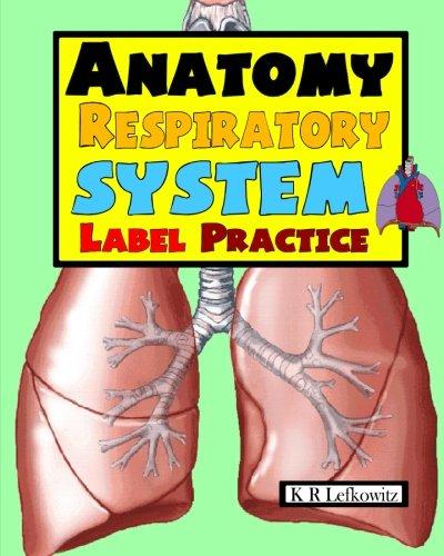 Anatomy Respiratory System Label Practice