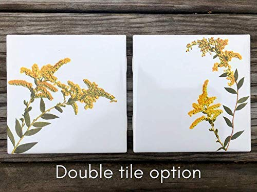 (Pair (2) Goldenrod Ceramic Tiles - Indoor and Outdoor Use, Home Decor Decorative Tile)