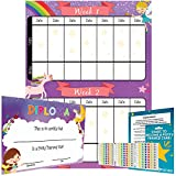Potty Training Chart - Reward Sticker Chart - Girls Theme - Marks Behavior Progress – Motivational Toilet Training for Toddlers and Children – Great for Boys and for Girls