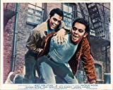WEST SIDE STORY ORIGINAL LOBBY CARD RUSS TAMBLYN AND RICHARD BEYMER FIGHT