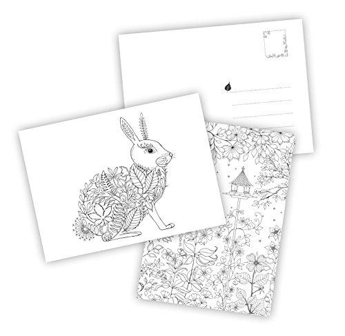 Mein Zauberwald: Postkartenbuch mit 20 herausnehmbaren Postkarten ...