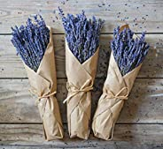 Dried Lavender Bundle Freshly harvested Real Natural Lavender Bunch Royal Velvet Lavender Bundles for DIY Home
