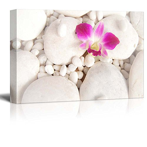 Pink Orchid Over White Rocks