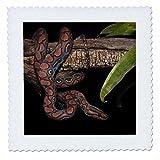 Best 3dRose Boas - 3dRose qs 86348 2 Rainbow Boa Snake, Amazon Review