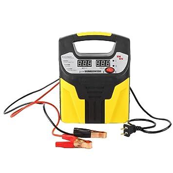 Amazon.com: Cargador de batería para coche, 220 V, pantalla ...