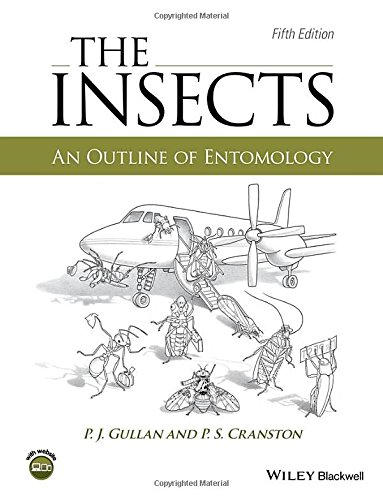 Insects:Outline Of Entomology