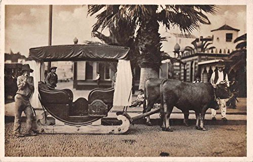 - Madeira Portugal Oxen Sled Real Photo Antique Postcard J50284