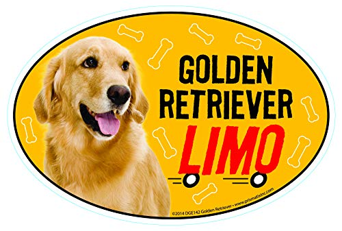 Prismatix Decal Golden Retriever Car Magnets: Golden Retriever Limo on Board  Oval 6quot x 4quot Auto/Truck/Refrigerator/Mailbox Funny Car Decals Dog Magnet Golden Retriever