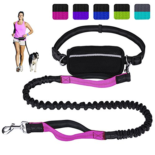 Hands Free Dog Leash for Running Walking Training Hiking, Dual-Handle Reflective Bungee, Poop Bag Dispenser Pouch, Adjustable Waist Belt, Shock Absorbing, Ideal for Medium to Large Dogs (Black W Pink) (Best Training For Hiking)