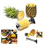 Itian Stylish Corer & Peeler Handheld Cylindrical Stainless Steel Pineapple Slicer / Corer with Circular Blade Specially Designed to Peel, Core and Slice Pineapples, Easy to Clean