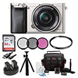 Sony Alpha a6000 24.3 MP Interchangeable Lens Camera with 16-50mm Power Zoom Lens (Silver) + Sony 64GB SD Card + Sony Case + Tiffen 40.5mm UV Protector & Ciruclar Polarizer Filter + Wasabi Power Two Replacement NP-FW 50 Batteries and Charger + Accessory Ki