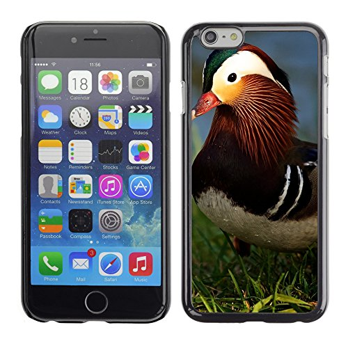 "Premio Sottile Slim Cassa Custodia Case Cover Shell // V00003631 canard mandarin 2 // Apple iPhone 6 6S 6G 4.7"""