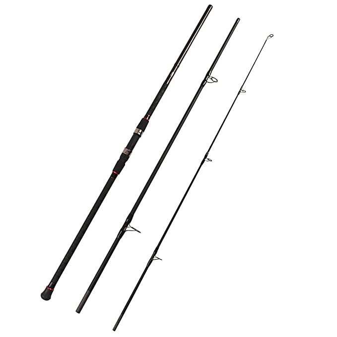 The 8 best surf fishing spinning rod