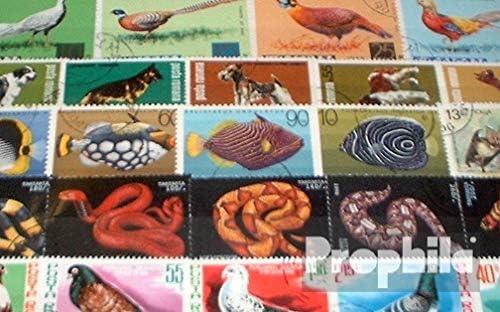 S/äuger Sonstige Prophila Collection Motive 100 Verschiedene Tiere Marken Briefmarken f/ür Sammler