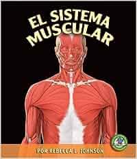 El Sistema Muscular = The Muscular System Libros Sobre El