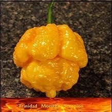 20 Seeds Yellow Trinidad Moruga Scorpion Hottest Chili pepper EXTREME Rare Chile