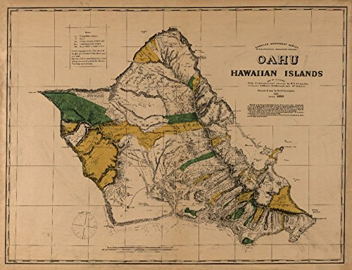 Oahu, Hawaii - (1881) - Panoramic Map (24x36 SIGNED Print Master Giclee Print w/ Certificate of Authenticity - Wall Decor Travel Poster) by Lantern Press