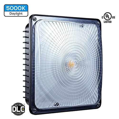 Led Light Fixtures For Parking Garages: LED Canopy Light Fixture 65W Water Tight Outdoor Exterior