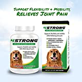 All Natural Hip & Joint Supplement for Dogs Review and Comparison