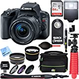 Canon EOS Rebel SL2 Digital SLR Camera + EF S 18-55mm is STM Lens Kit + Accessory Bundle 64GB SDXC Memory +Deco Gear DSLR Bag + Wide Angle Lens + 2X Telephoto Lens + Flash + Remote + Tripod & More