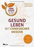 Gesund leben mit Chinesischer Medizin (Yang Sheng 1): Ganzheitlich vorsorgen und Beschwerden lindern