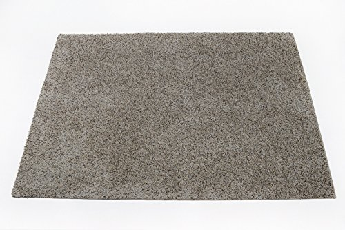 Soft Flecked Frieze Beige Bound Carpet Area Rug - 8'x10'