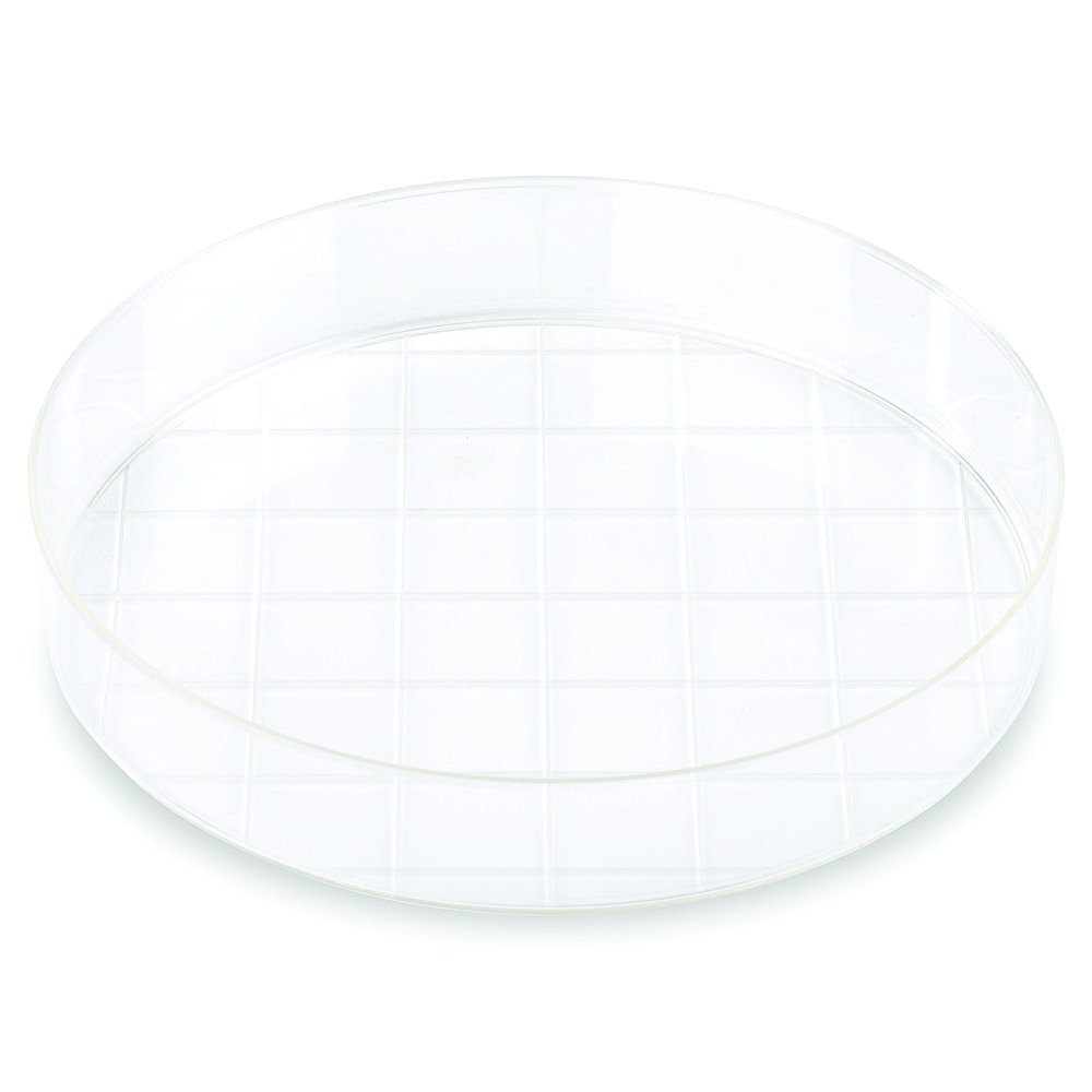 Corning Falcon #353025, 150 mm TC-Treated Cell Culture Dish with 20 mm Grid, (Pack of 10)