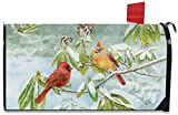 Briarwood Lane Winter Birds Magnetic Mailbox Cover