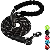 5 FT Strong Dog Leash with Comfortable Padded Handle and Highly Reflective Threads Dog Leashes for Medium and Large Dogs   7 Colors